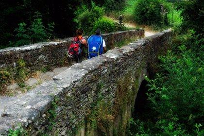 """Cultura no se cierra a estudiar propuestas de nuevas rutas del Camino, pero avisa: """"Deben tener base histórica"""""""