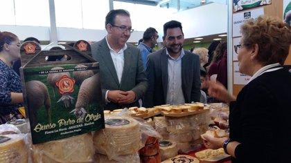 El Mercado del Queso Artesano de Aracena se consolida con la presencia de 20 queserías de toda España
