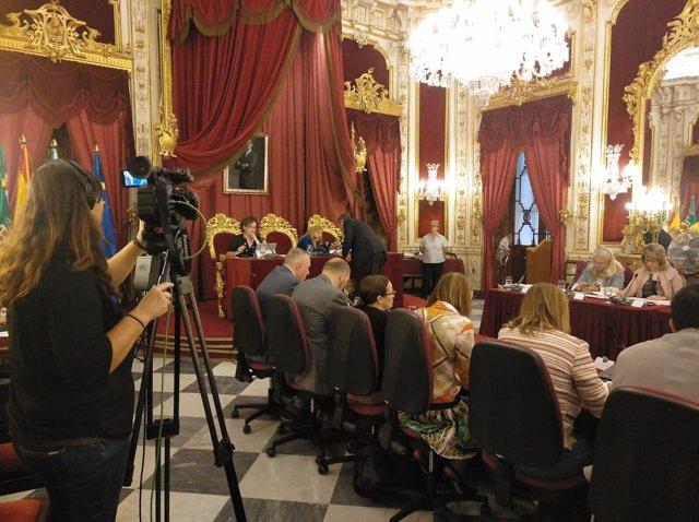 Pleno en Diputación del mes de octubre
