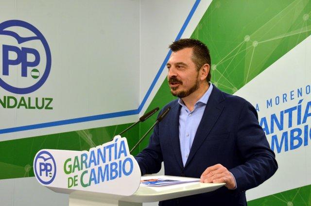 El vicesecretario de Organización, Formación y Electoral del PP-A, Toni Martín.