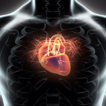 Objetivo: predecir el riesgo alto de una enfermedad cardiovascular