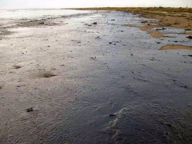 Vertido de petróleo en la playa