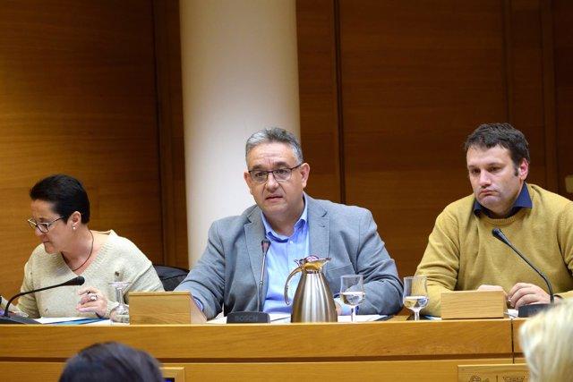 Lluís Miquel Campos interviene en la comisión sobre Crespo Gomar