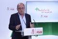 PSOE-A: PP-A Y CS DEBEN DECIR LA VERDAD A LOS ANDALUCES Y ADMITIR QUE NECESITAN CONTAR CON VOX