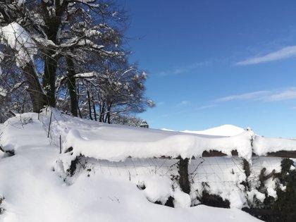 La Ibérica riojana en aviso amarillo por nevadas este jueves con acumulación de hasta cinco centímetros