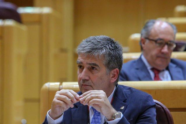 El portavoz del PP en el Senado, Ignacio Cosidó