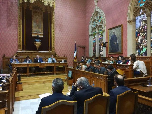 Sesión plenaria del Consell de Mallorca
