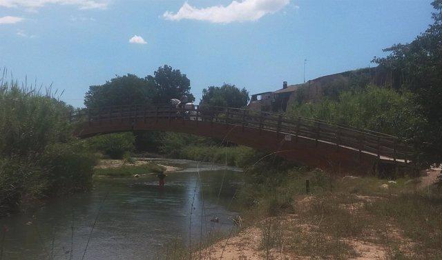 Un caballo cruza el Turia por una de las pasarelas del parque fluvial