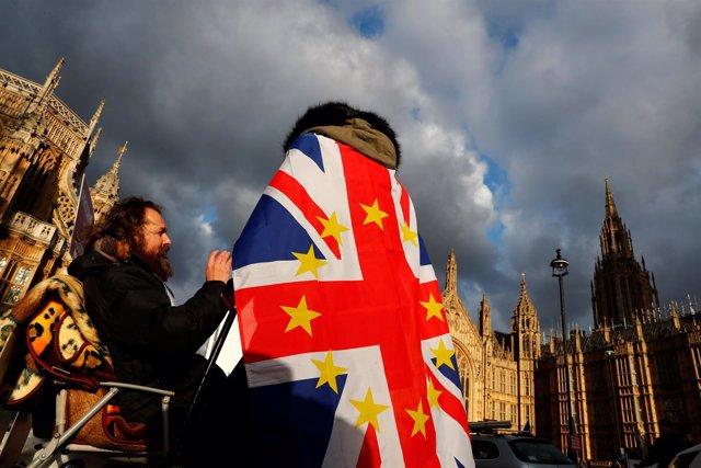 Manifestante contra el Brexit junto al Parlamento en Londres