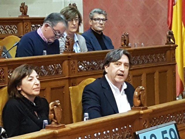 Portavoz del PP en el Consell de Mallorca, Mauricio