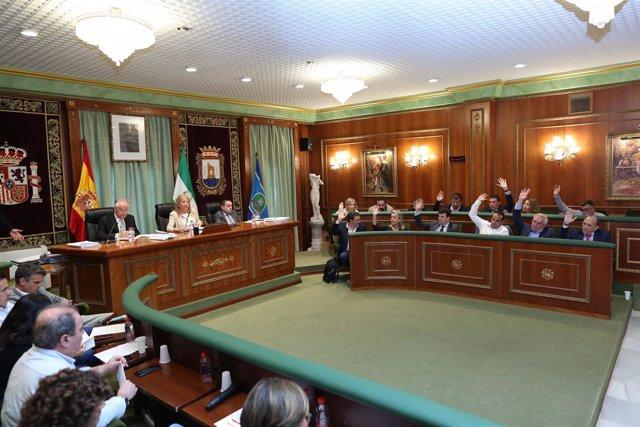 Pleno del ayto de marbella diciembre 2018 ordenanza