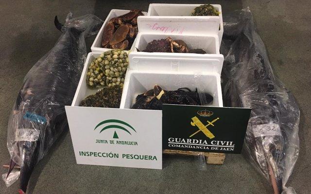 La Guardia Civil interviene en Guarromán (Jaén) 111 kilos de pescado y marisco no apto para el consumo