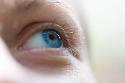 El ojo se comunica en código morse