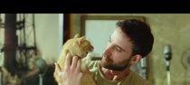 Llega a los cines la comedia española 'Miamor perdido'