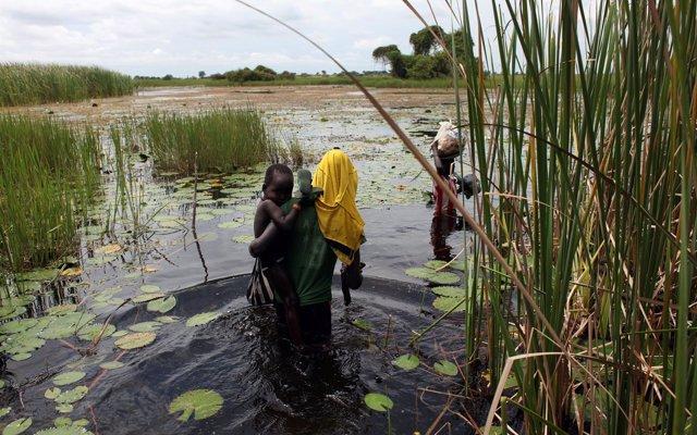 El legado de cinco años de guerra en Sudán del Sur