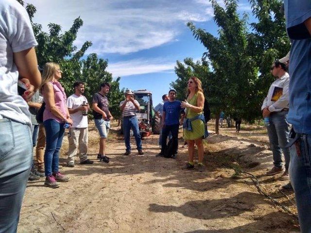 El CITA lleva a Argentina sus variedades de almendro