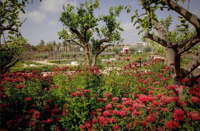 Parc Central de València