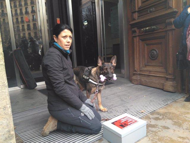 Silvia González entrega 125.000 firmas en el Parlamento foral