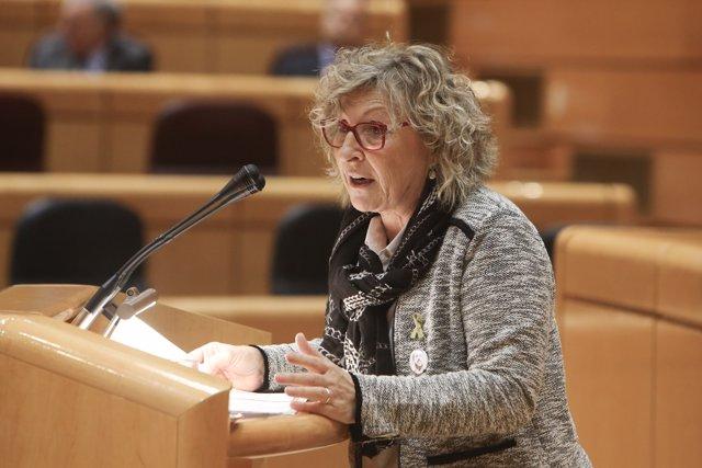 La senadora Mirella Cortés (arxiu)