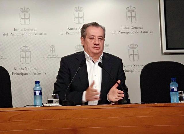 El portavoz de Ciudadanos, Nicanor García, en rueda de prensa