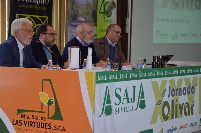 Jornada de Asaja Sevilla sobre el olivar