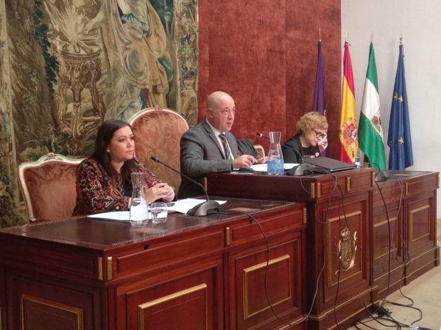 Antonio Ruiz preside el Pleno de la Diputación