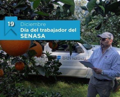 19 de diciembre: Día del Trabajador del SENASA en Argentina, ¿por qué se celebra hoy?