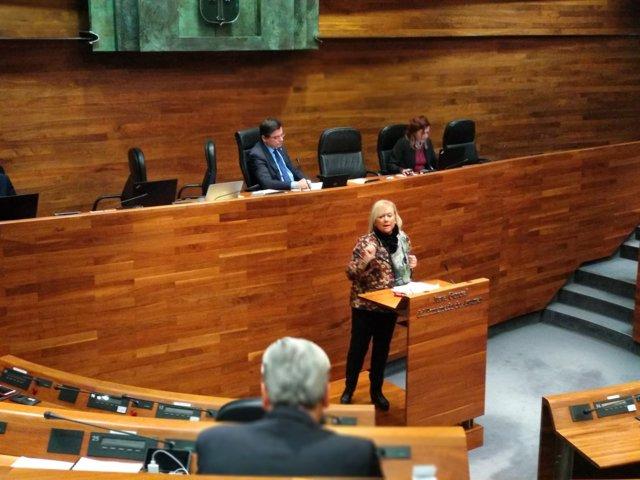 La presidenta del PP, Mercedes Fernández, en el debate de totalidad
