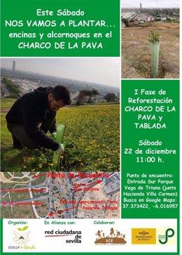 Cartel de la plantación participativa