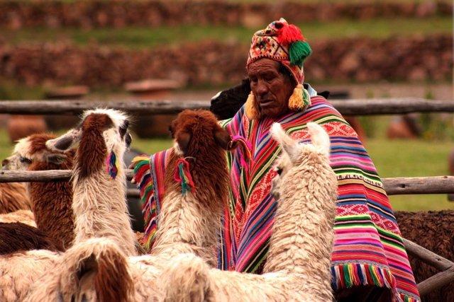 Perú es el país con la canasta básica más cara
