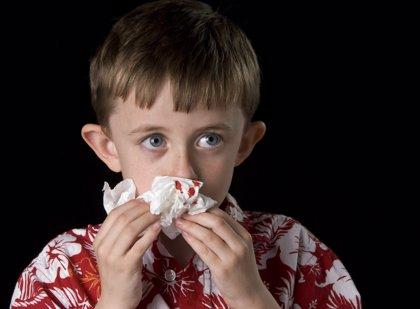 ¿Qué hacer ante una hemorragia nasal? ¡Nunca hay que taponar la nariz!