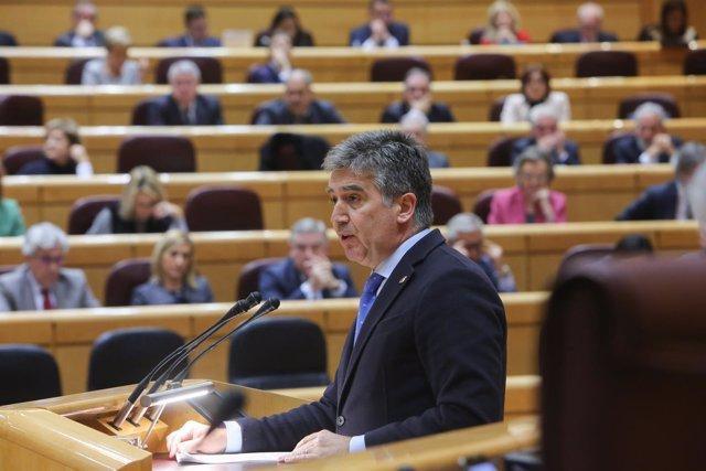 El portavoz del PP en el Senado, Ignacio Cosidó, y el Grupo Popular