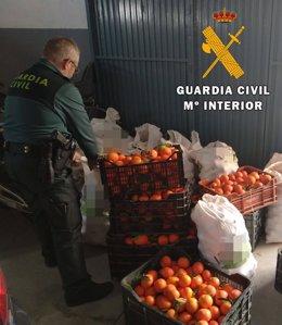 Mandarinas sustraídas halladas en un vehículo en Almería