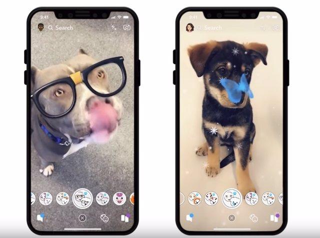 Filtros para perros en Snapchat