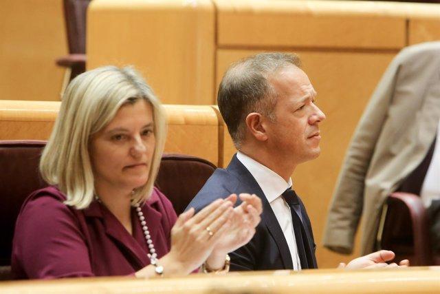 El portavoz del PSOE en el Senado, Ander Gil, durante un Pleno.