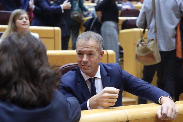 Ander Gil, portavoz del PSOE en el Senado, durante un Pleno
