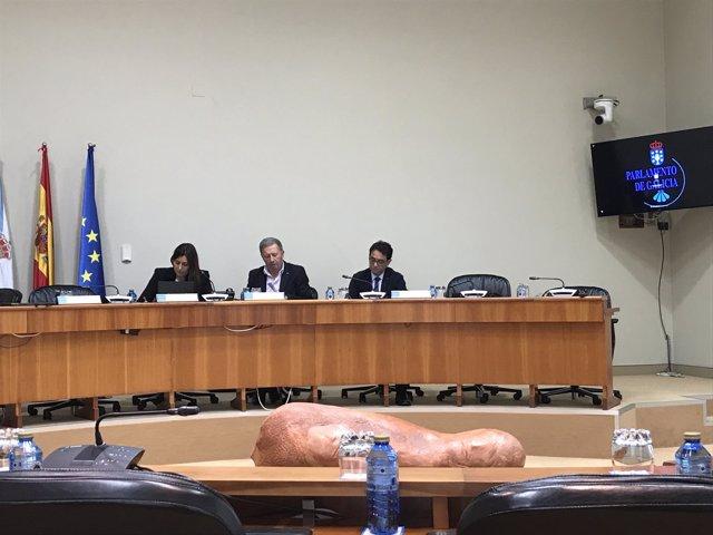Comparencia de Felipe Calle Vellés en el Parlamento