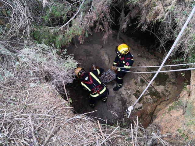 Los bomberos en el momento de rescatar al perro