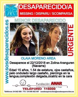 La Guardia Civil busca a una joven de 15 años desaparecida en Zolina