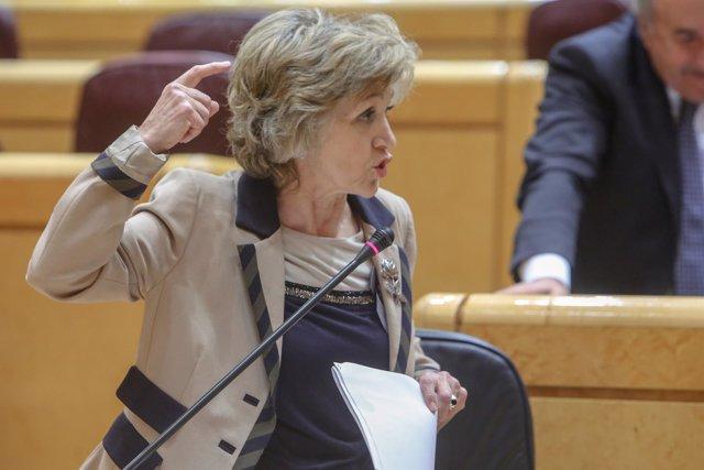 Pleno en el Senado
