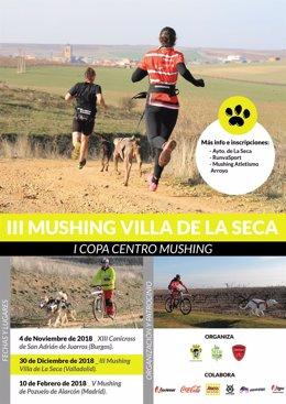 Valladolid.- Cartel II Mushing La Seca