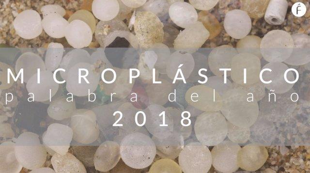 Microplástico, palabra del año 2018 para la Fundéu BBVA