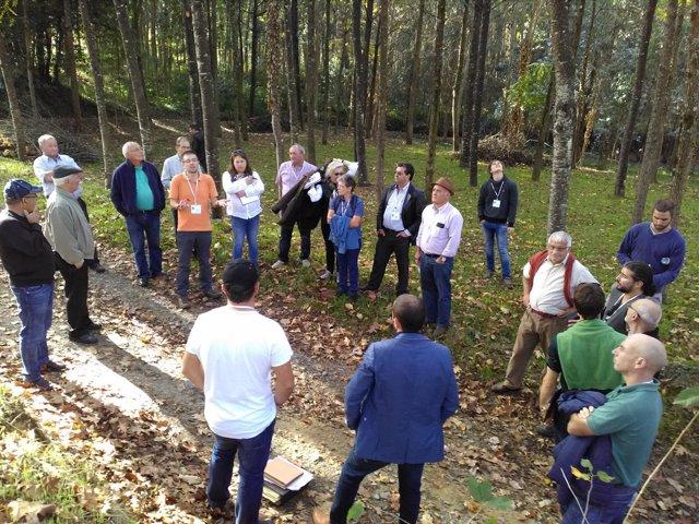 Curso organizado por FOREST-IN