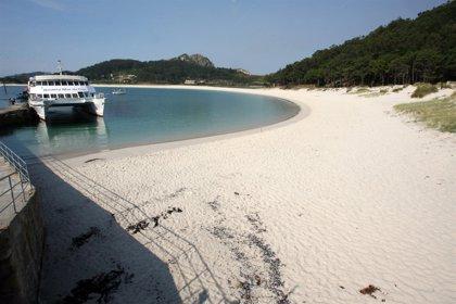 Los pastos marinos salvan playas y ahorran dinero