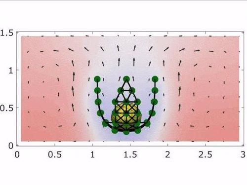 Imagen del experimento