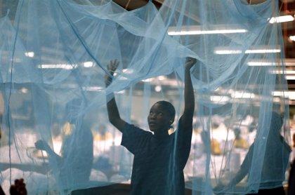 Consiguen por primera vez medir la cantidad de insecticida en las mosquiteras contra la malaria