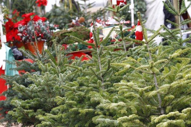 Navidad, navidades, árbol de Navidad, compras