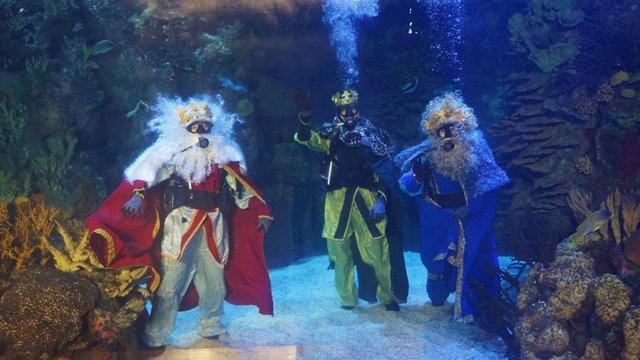 Los Reyes Magos, tras el acrílico del mar Rojo