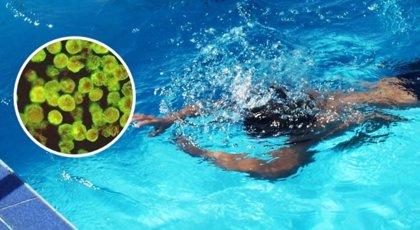 """Una niña de 10 años se contagia de una ameba """"comecerebros"""" en una piscina pública de Perú"""