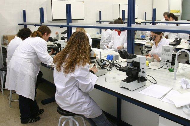 Facultat de Biocincies de la UAB